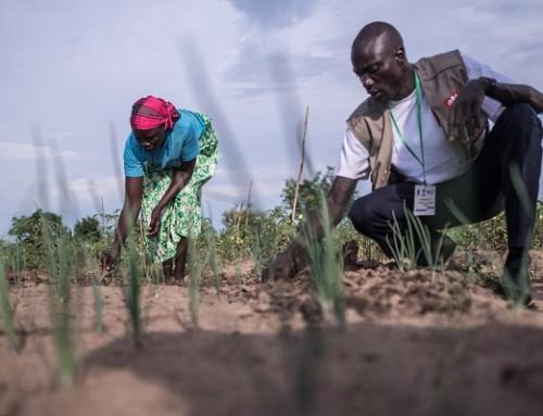 Statsbudsjettet 2019: Savner større innsats mot sultnår klimaendringene truer