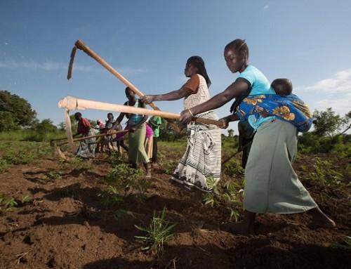 PRESSEMELDING: Regjeringens løfter om innsats mot sult må følges opp med økte midler
