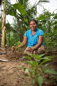 Laxmi fra Sri Lanka har fått flere og større avlinger etter at hun begynte med klimasmart jordbruk.