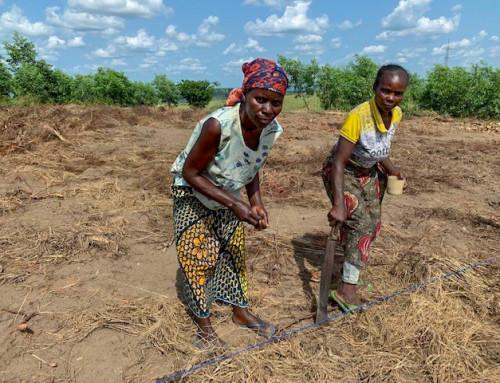 Ved å satse på kvinner i landbruket, utrydder vi sult raskere.