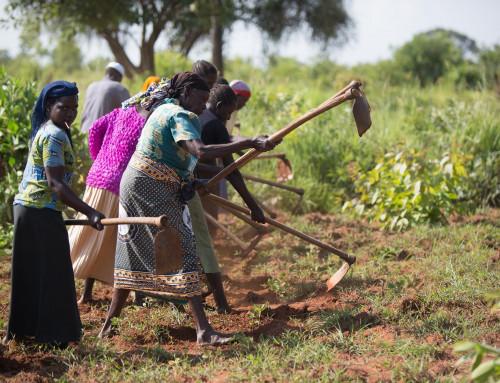 Caritas kritiserer bistandskutt