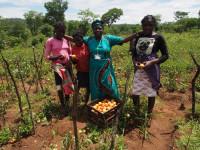 Småskalabonde Theresa Chanda - Zambia
